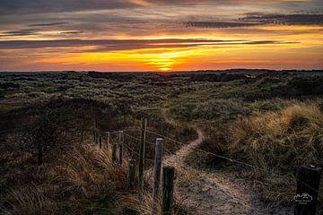 Sonnenaufgang in den Dünen von Ameland von Martien Hoogebeen Fotografie