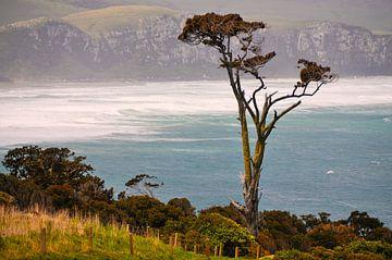 Raue Küste von Denis Feiner