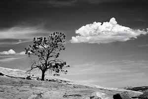 Canyonlands. Utah van