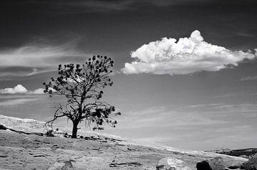 Canyonlands. Utah van Peter Bongers