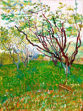 Der blühende Obstgarten - Vincent van Gogh - 1888 von Jan Willem van Doesburg
