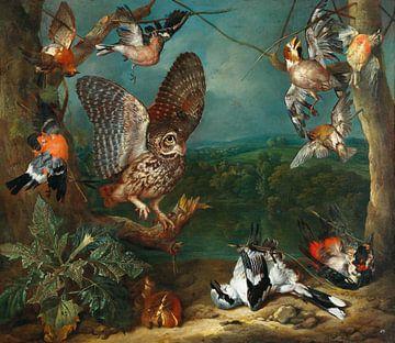 Eine Eule und andere Vögel, Philipp Ferdinand de Hamilton