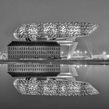 Havenhuis Antwerpen 's nachts gereflecteerd in een vijver van Tony Vingerhoets
