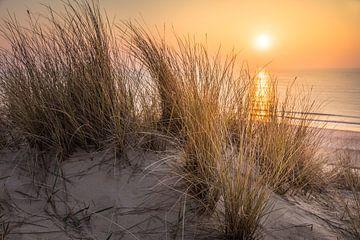 Blick von den Dünen zum Meer auf Sylt von Christian Müringer