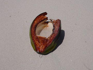 Coconut Beach - Barbados van Daniel Chambers