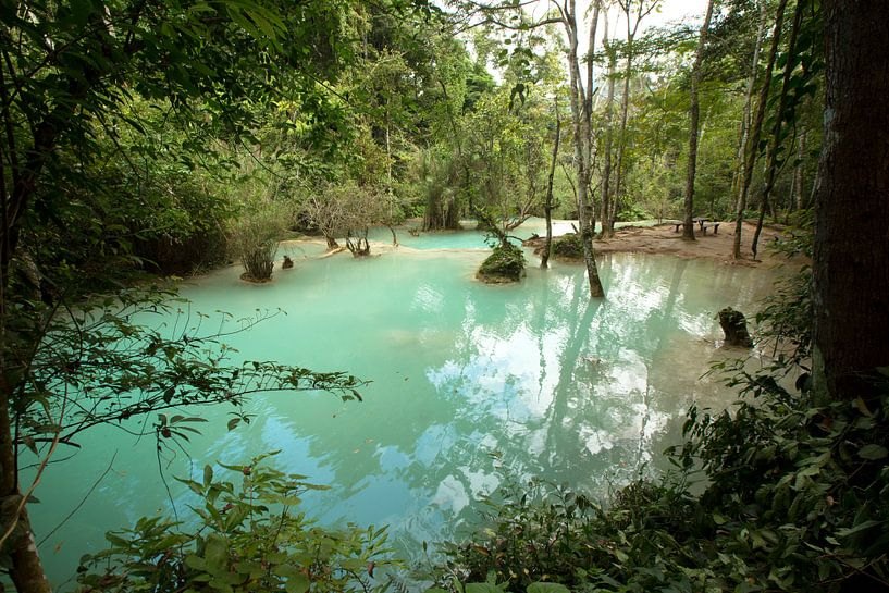 Turquoise pool at Kuang Si waterfalls, Laos van Fleur Halkema