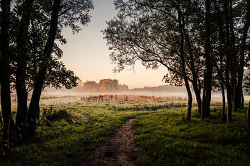 Blick vom Leeuwarder Bos von Nando Foto