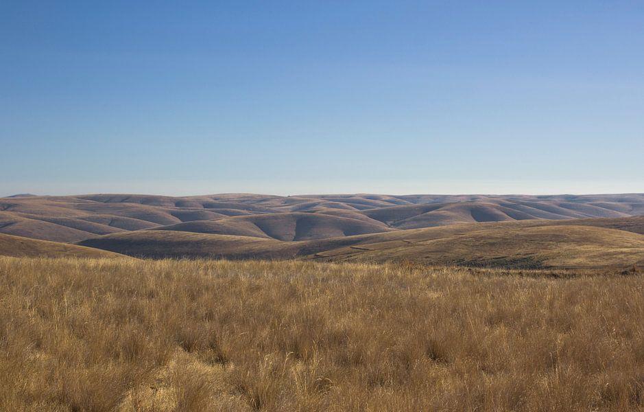 Rolling Hills, Oregon trail USA van Jeanine Verbraak
