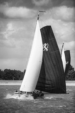 Skûtsje van Leeuwarden klassieke Friese Tjalk zeilboot van Sjoerd van der Wal