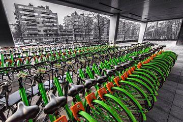 Fahrräder von Rob Boon