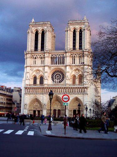 Notre Dame '2of4' van Niels van Houten