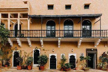Pastellfarbene gelbe Festung in Indien mit schönen Pflanzen von Yvette Baur