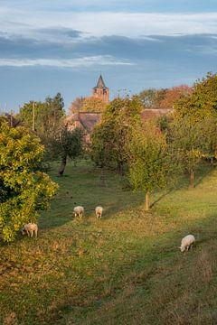 Kerk Lienden van Moetwil en van Dijk - Fotografie
