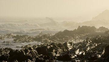 Felsenküste am Tsitsikamma-Naturreservat, Südafrika.  von Ron Poot