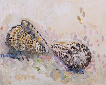 Stilleben mit Muscheln 2 (Conus) von Tanja Koelemij