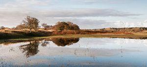 Duin panorama over het water