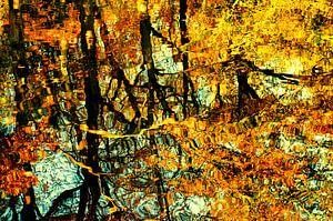 Goldener Herbst von Paula van den Akker