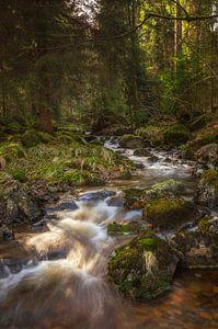Waterfall at Harz Mountain