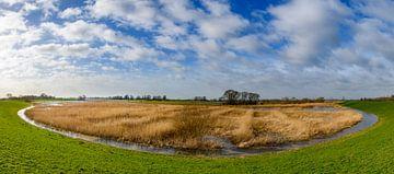 Panoramisch uitzicht over het natuurgebied Scheerenwelle in de IJsseldelta van Sjoerd van der Wal