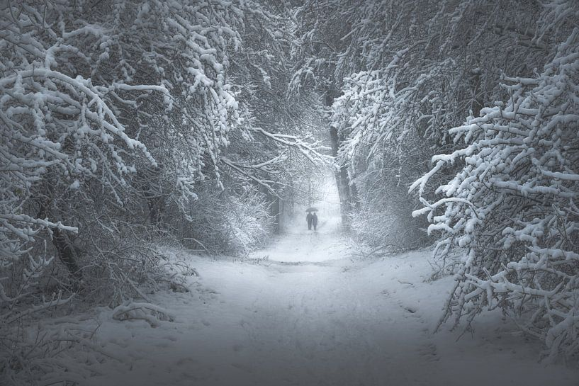 Winter's Gate von Daniel Laan