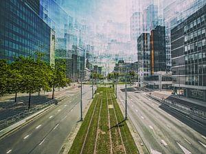 Rotterdam in beweging van