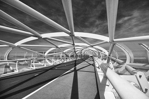 "Fietsbrug ""de Netkous"" in Rotterdam over de A15 sur"