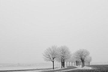 Winterliche Stimmung von Keith Wilson Photography