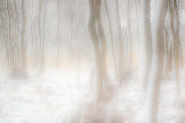 Winterträume von jowan iven