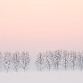 Winter landschap van Arnold van Wijk