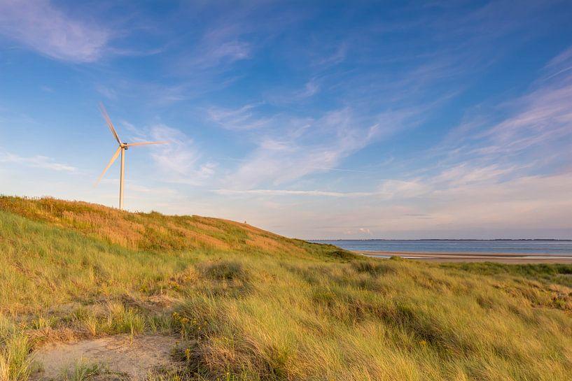 moulin à vent sur Jan Koppelaar