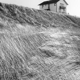 Dreamhouse van margreet van vliet