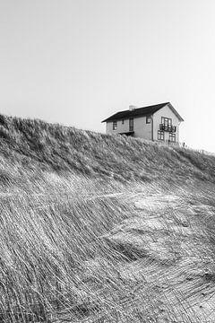 Dreamhouse von margreet van vliet