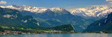 Panorama Brienzersee, Zwitserland van Henk Meijer Photography