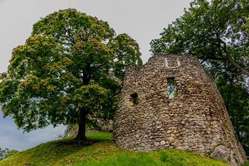 Prachtige kasteelruïne en park aan de Rennsteig/Thüringerwoud van Oliver Hlavaty