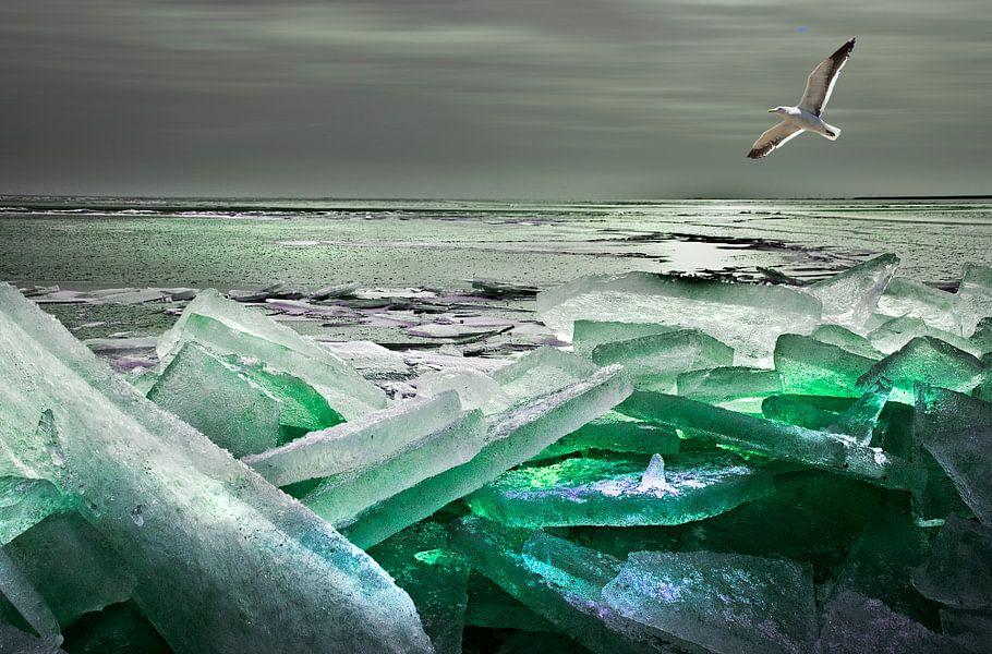 Winters IJsselmeer van Fons Bitter