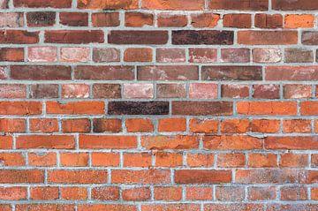 Gros plan de la texture d'un mur de briques rouges sur Alex Winter