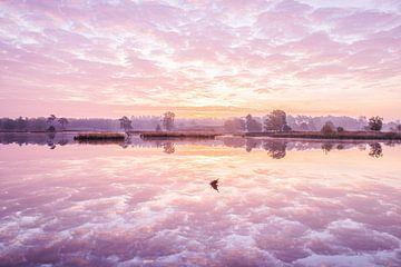 Sonnenaufgang über einem Moor von Elroy Spelbos
