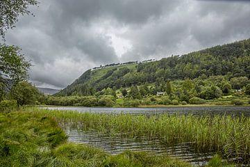 Idyllische Ausstellung im Glendalough Valley, County Wicklow, Irland von Tjeerd Kruse