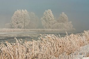 Winter landschap in Noordholland van Sjaak van Etten