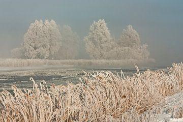Winter landschap in Noordholland von Sjaak van Etten
