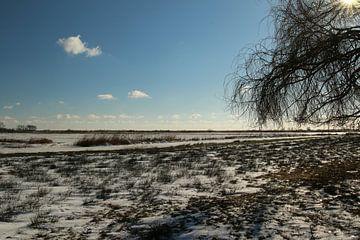 Ein winterlicher Blick über das Sneekermeer von Pim van der Horst
