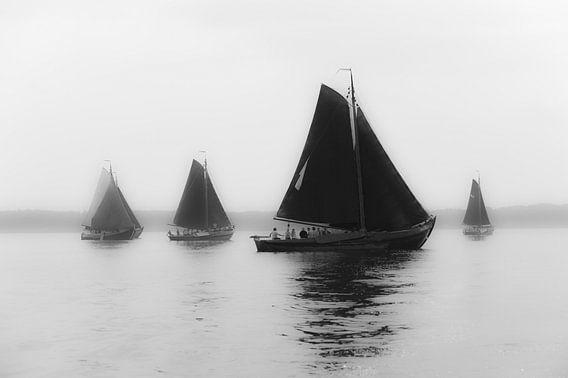 Botters in the Mist van Brian Morgan