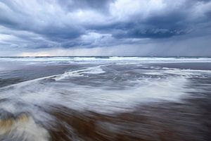 Wilde Noordzee