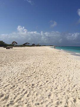 Klein Curacao, paradijselijk strand van Patsy Van den Broeck