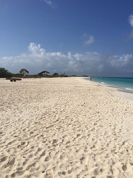 Little Curacao, paradise beach sur Patsy Van den Broeck