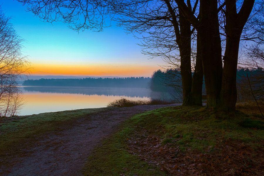 Sunrise View 'Tree' van William Mevissen