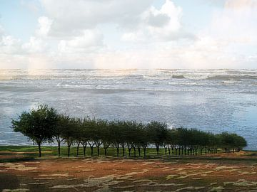 ZeeBomenrij van Ab Wisselink