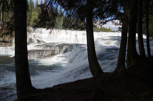 Dawson Falls, Canada van