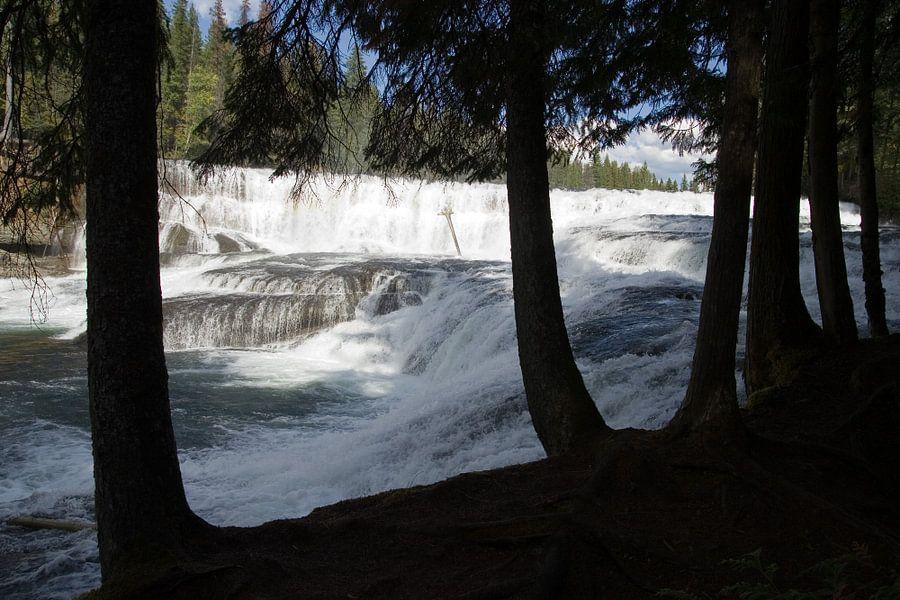 Dawson Falls, Canada van Karin Hendriks Fotografie