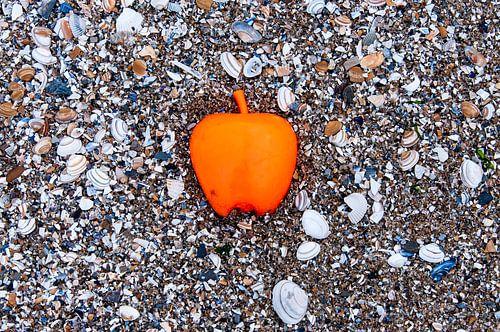 Apple on the Beach - Schelpen Pt I